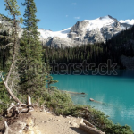 Screen Shot 2019 12 18 at 12.31.29 150x150 - Visit my Shutterstock Gallery