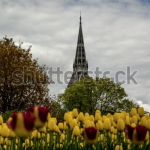 Screen Shot 2019 12 18 at 12.32.08 150x150 - Visit my Shutterstock Gallery